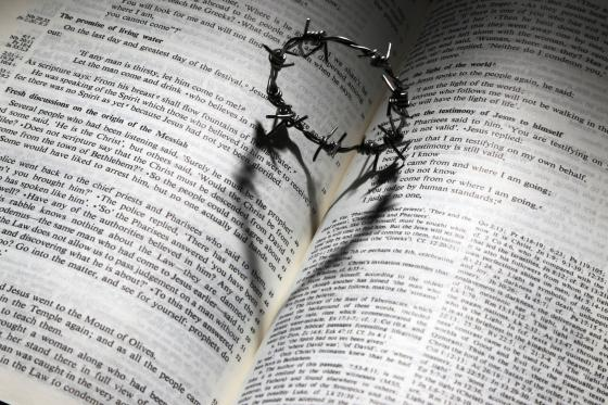 bible crown of thorns and heart image 2