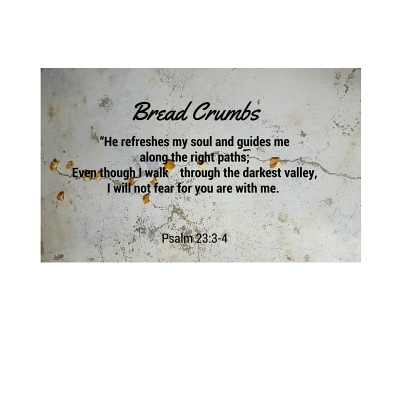 Bread Crumbs (1)